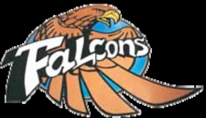 Foley High School mascot
