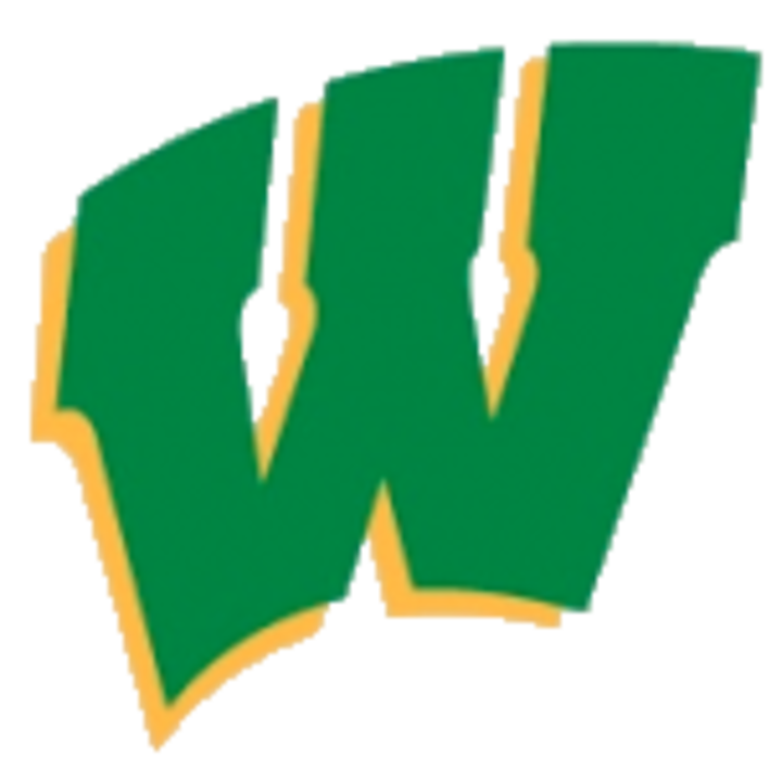 West Davidson High School mascot