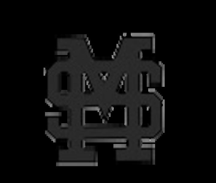 St Michaels High School mascot