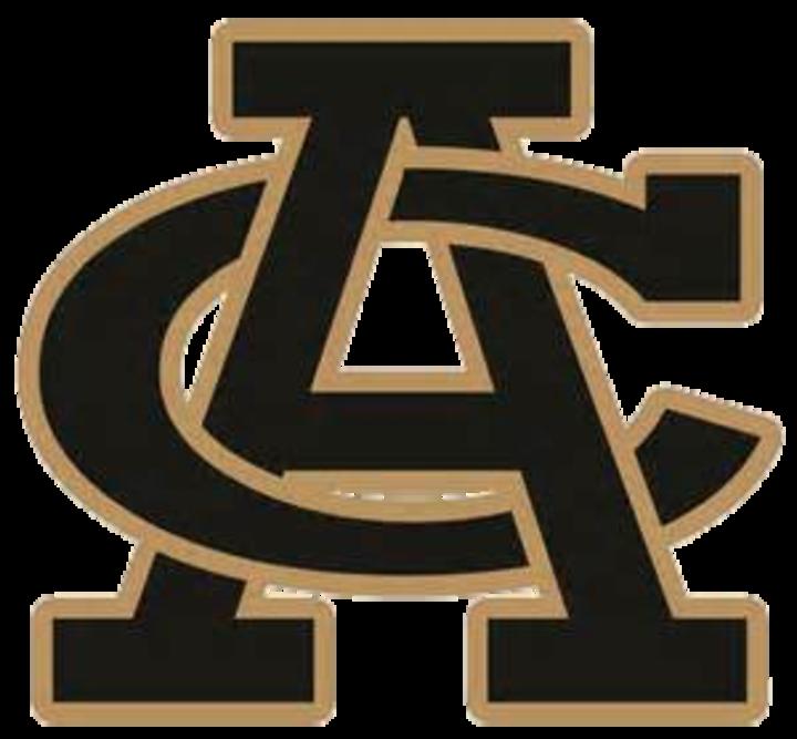 Archer City High School mascot