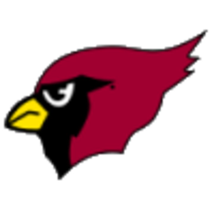 South Shelby High School mascot