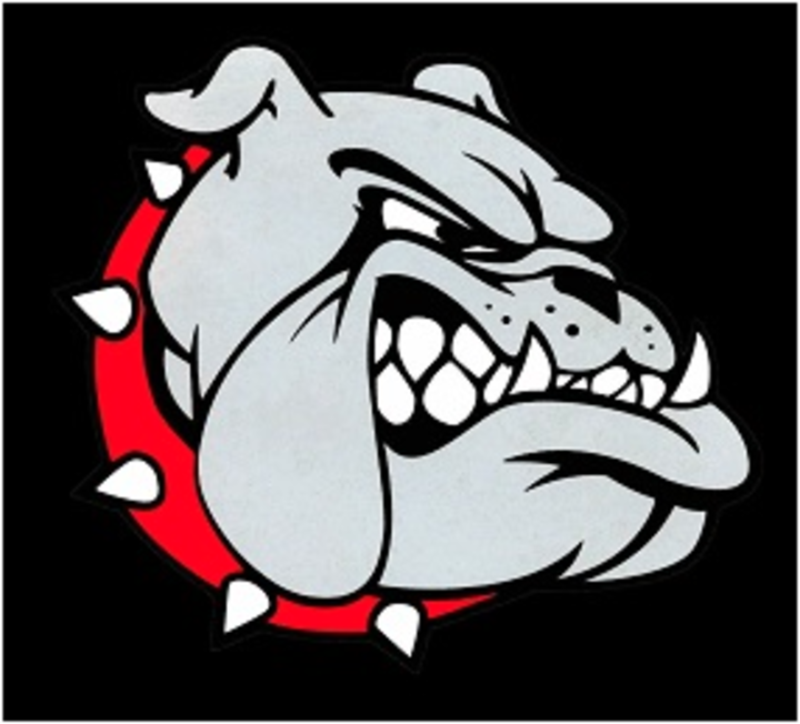 Bowie High School mascot