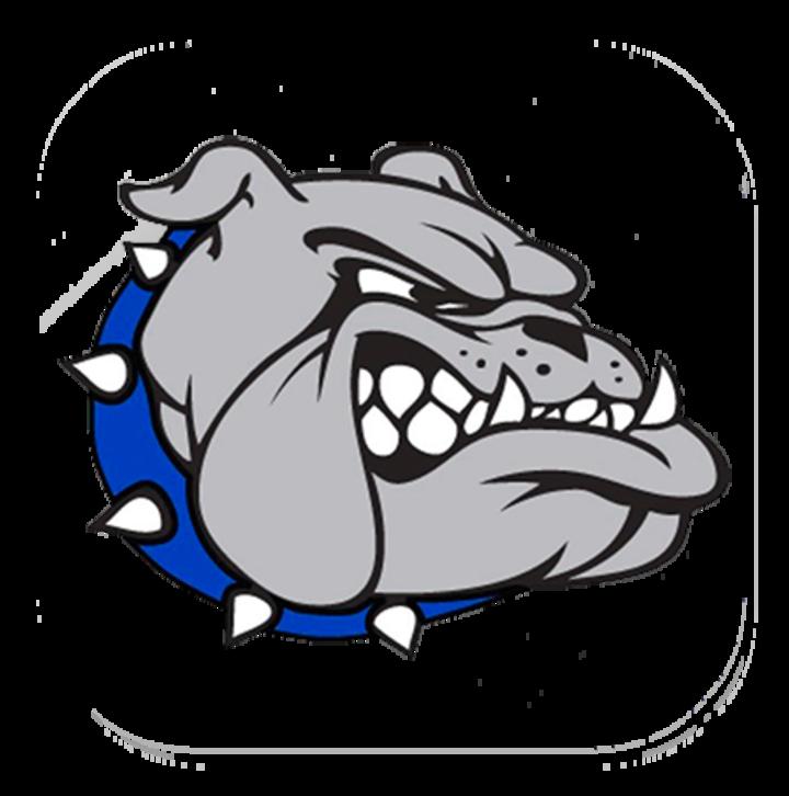Cabool High School mascot