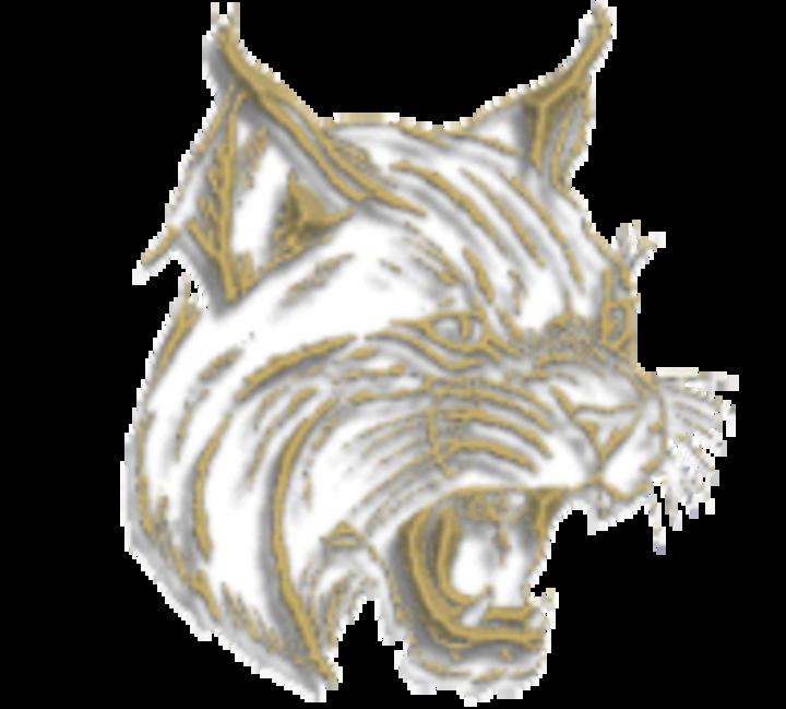 Mattawan High School mascot