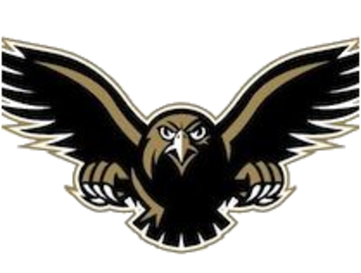 Poolesville High School mascot
