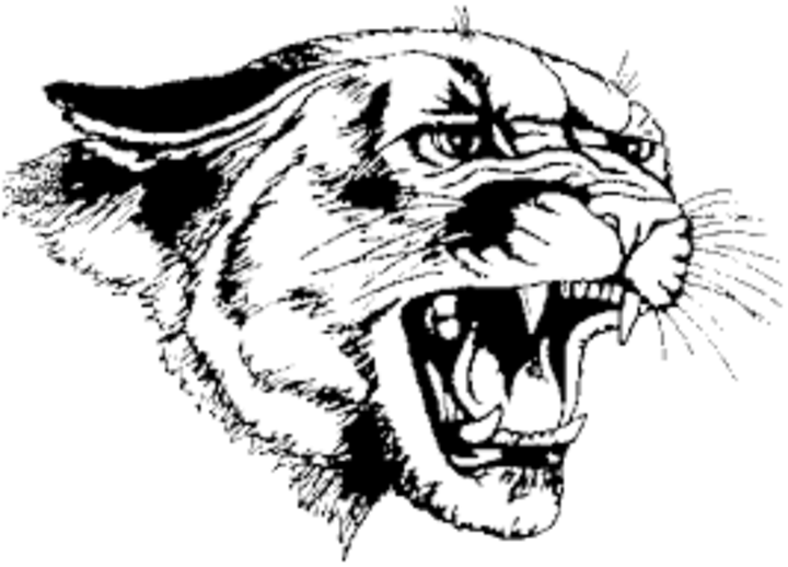 Mabel-Canton High School mascot