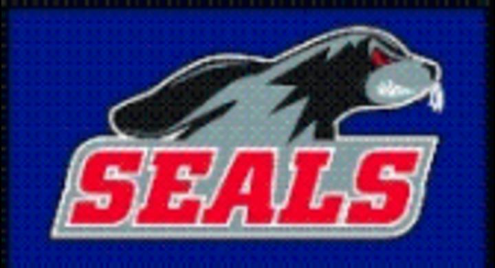 Selinsgrove Area High School mascot