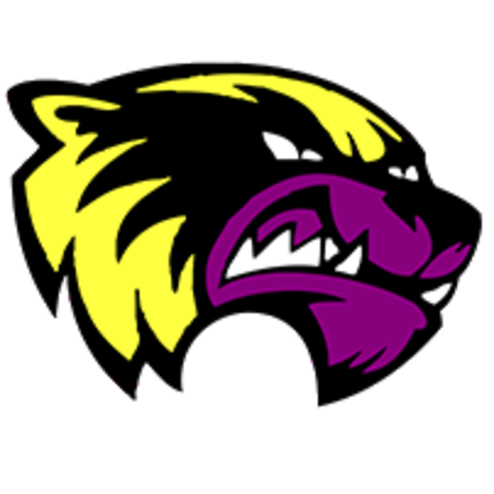Herreid High School mascot