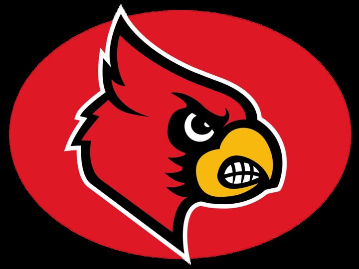 Triad High School mascot