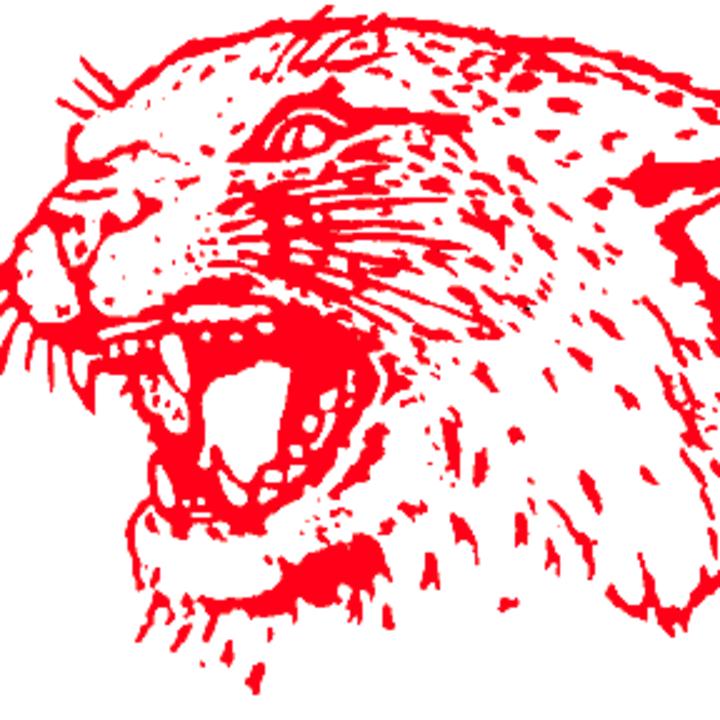 Owen J Roberts High School mascot