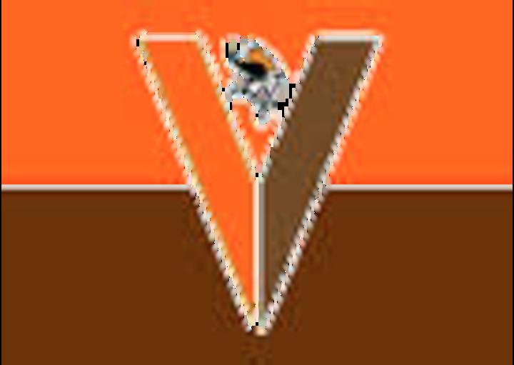 Perkiomen Valley High School mascot