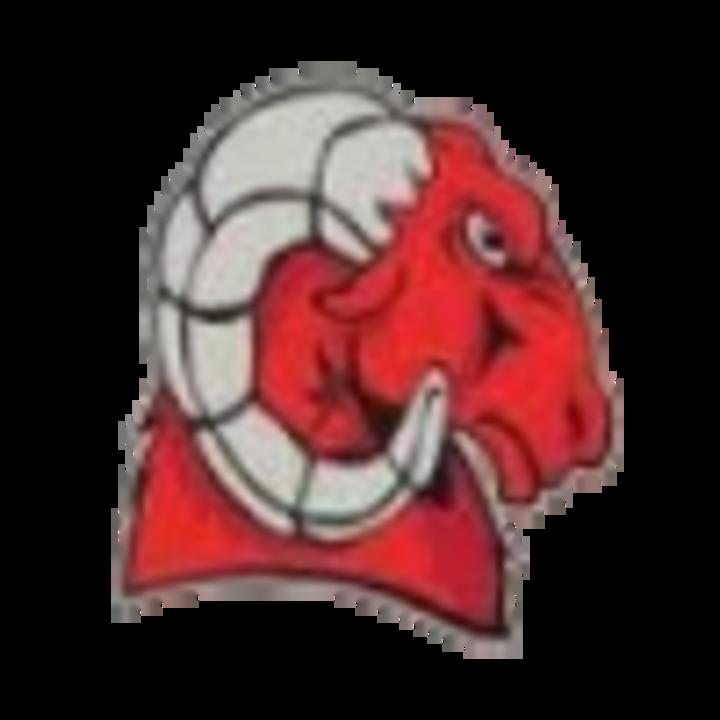 Suitland High School mascot