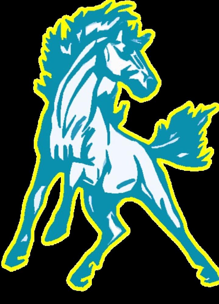 Richland High School mascot