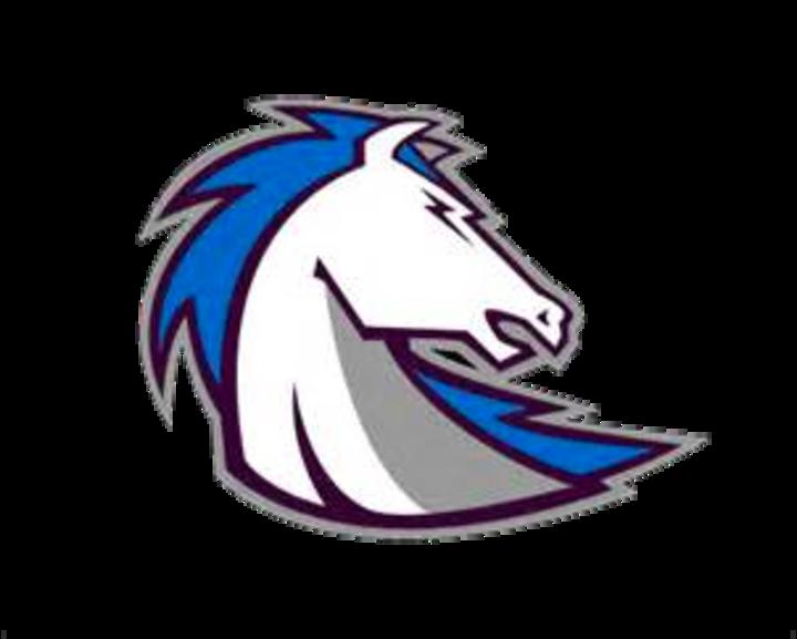 Clear Springs High School mascot