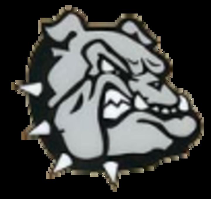 Brookfield High School mascot