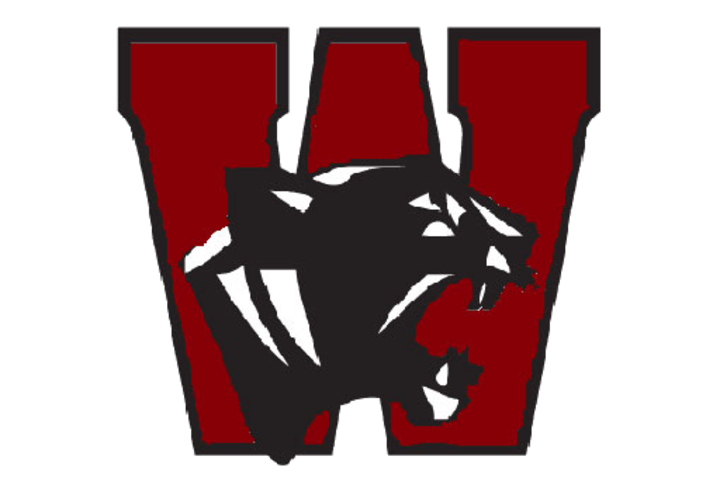 Watervliet High School mascot