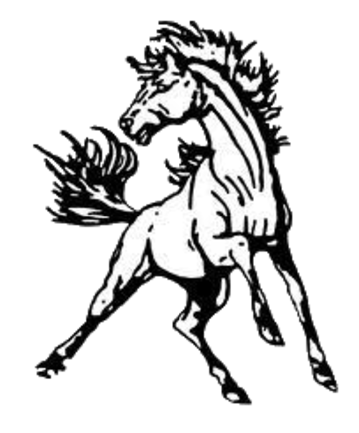 North Moore High School mascot