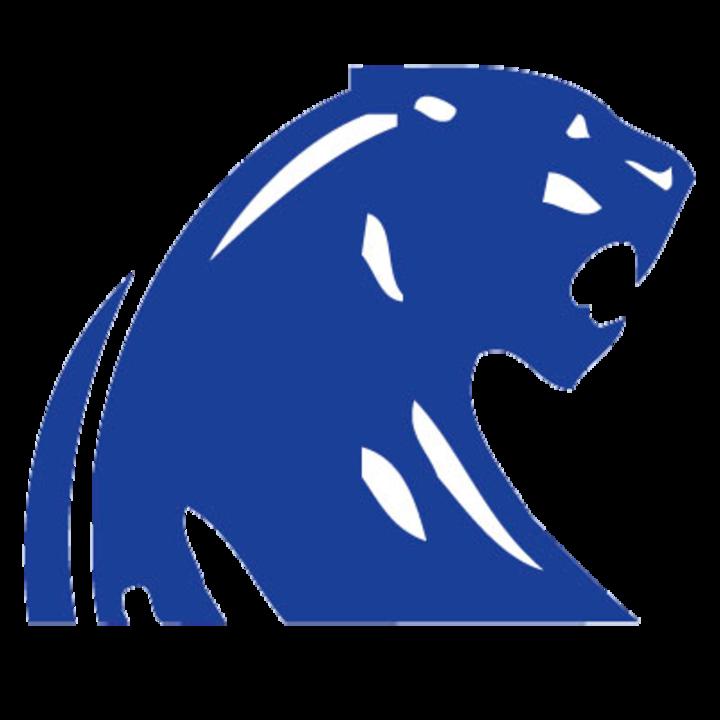 DeWitt High School mascot