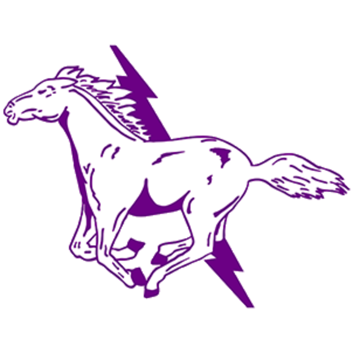 Sully Buttes High School mascot
