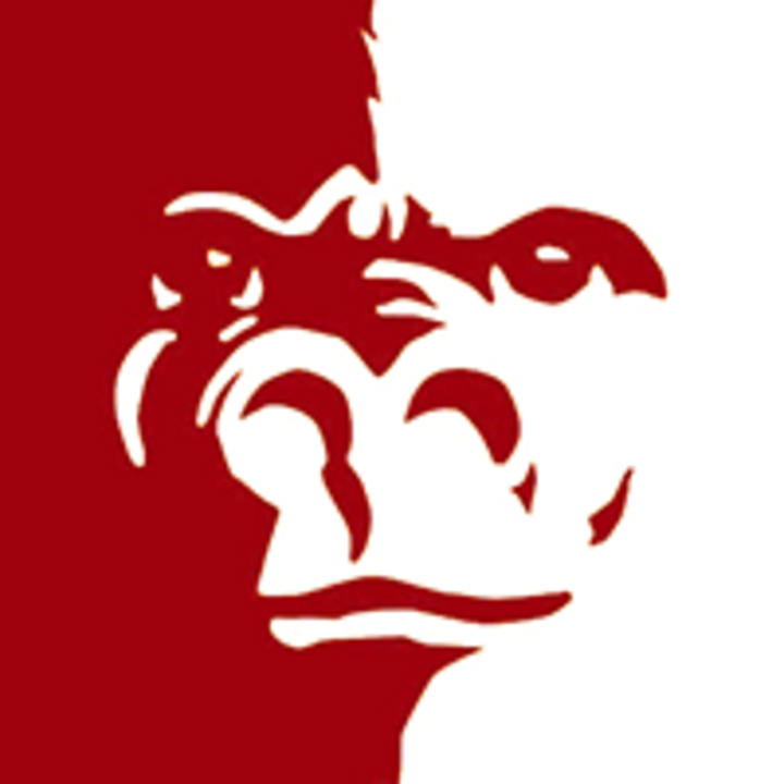 Gregory High School mascot