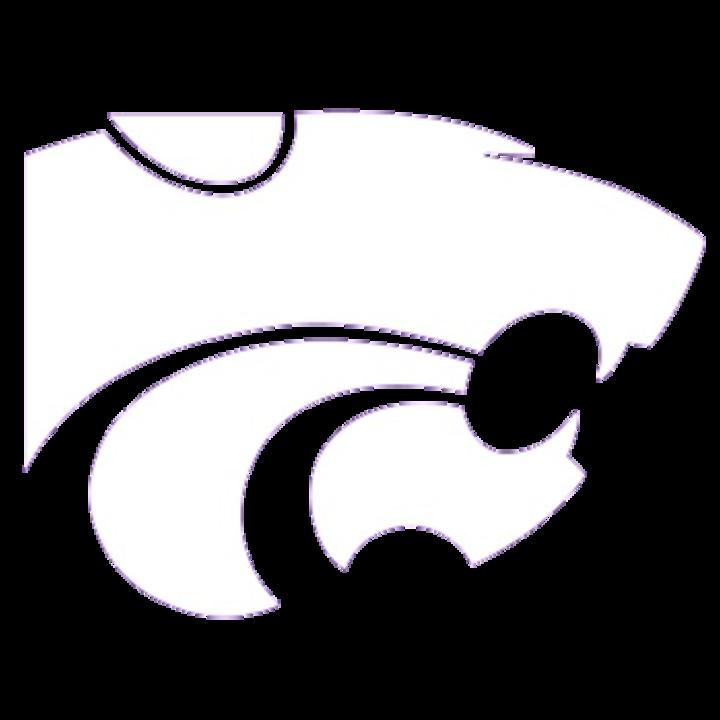 Big Sandy School mascot