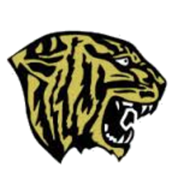 Fridley High School mascot