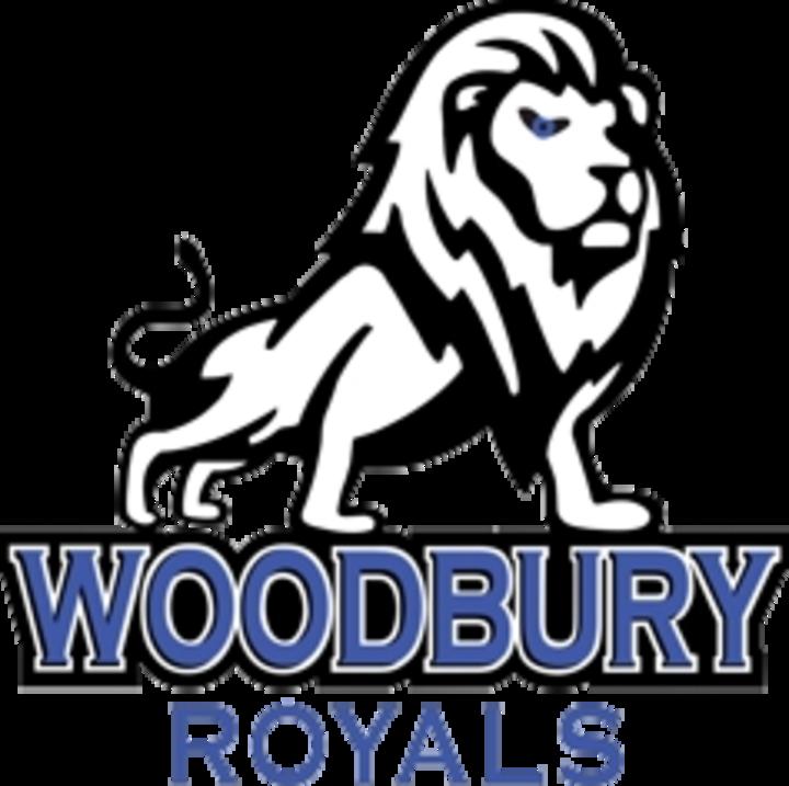 Woodbury High School mascot
