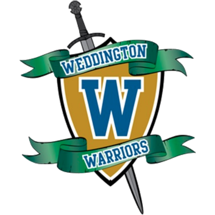 Weddington High School mascot