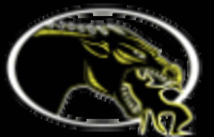 Cameron High School mascot