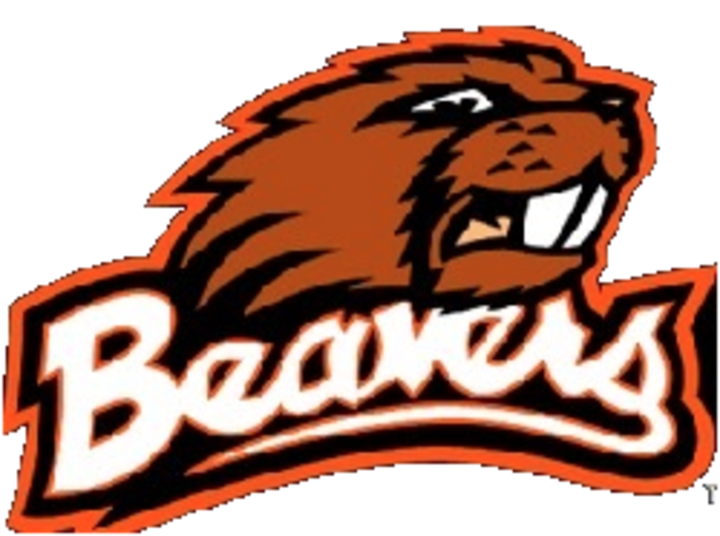 Corry Area High School mascot