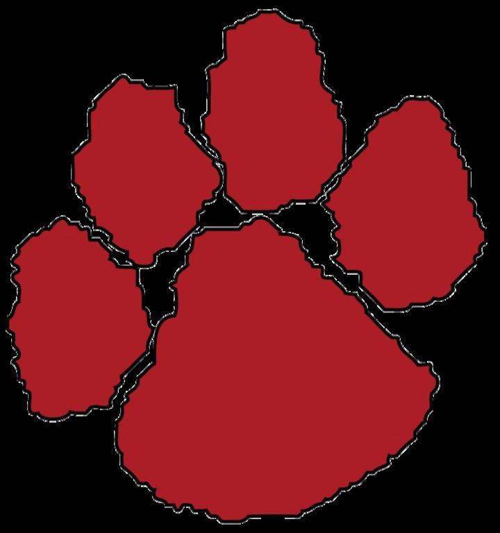 Asheville High School mascot