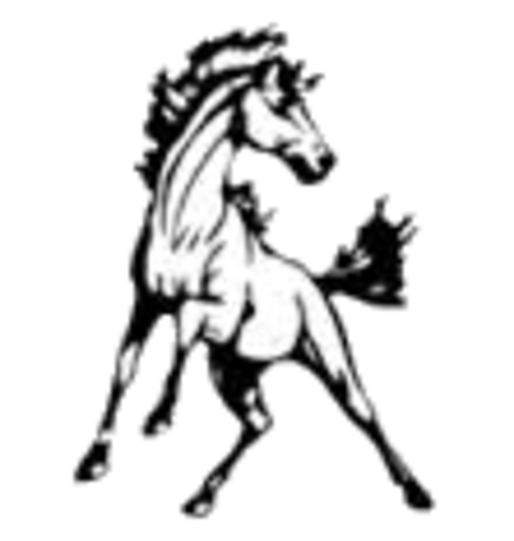 Bryce Valley High School mascot