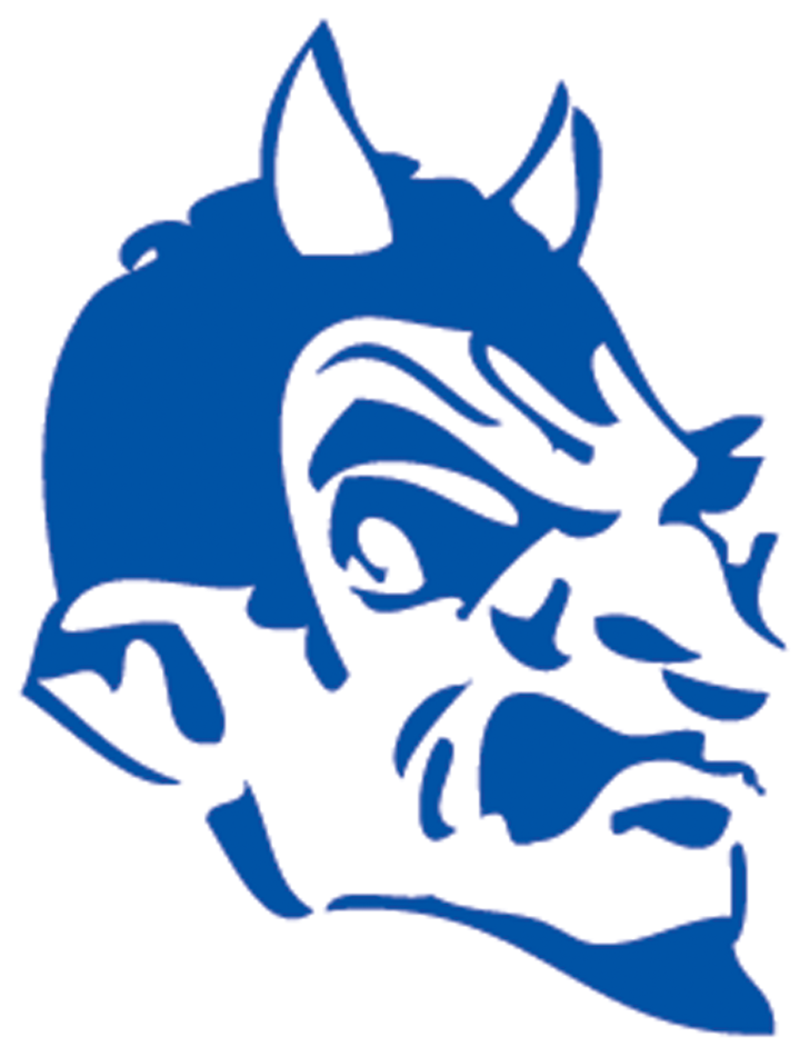 Fairhaven High School mascot