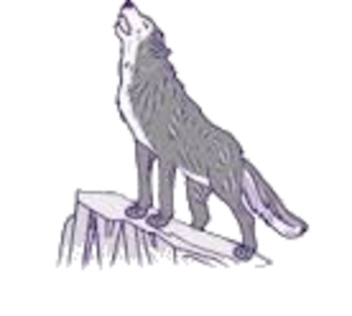 Riverton High School mascot