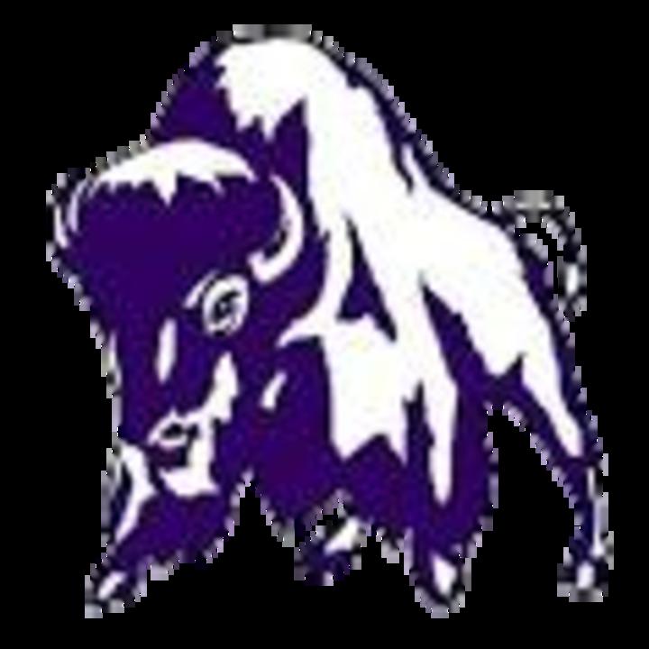 Tooele High School mascot