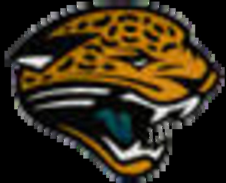 Falls Church High School mascot