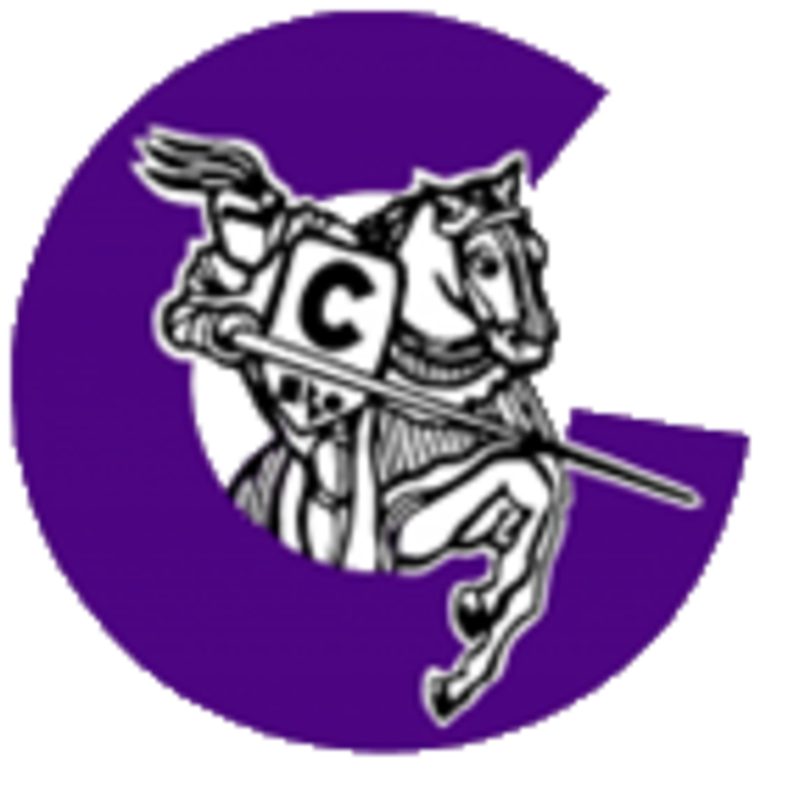 Chantilly High School mascot