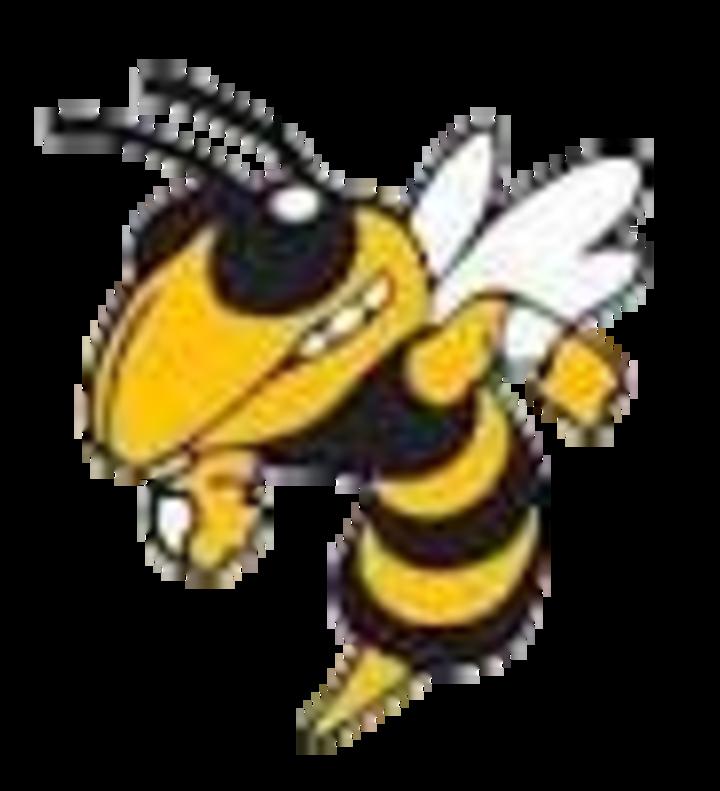Wasatch High School mascot