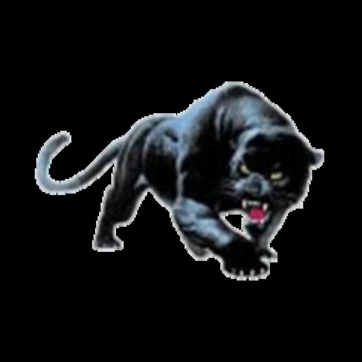 Durand High School mascot
