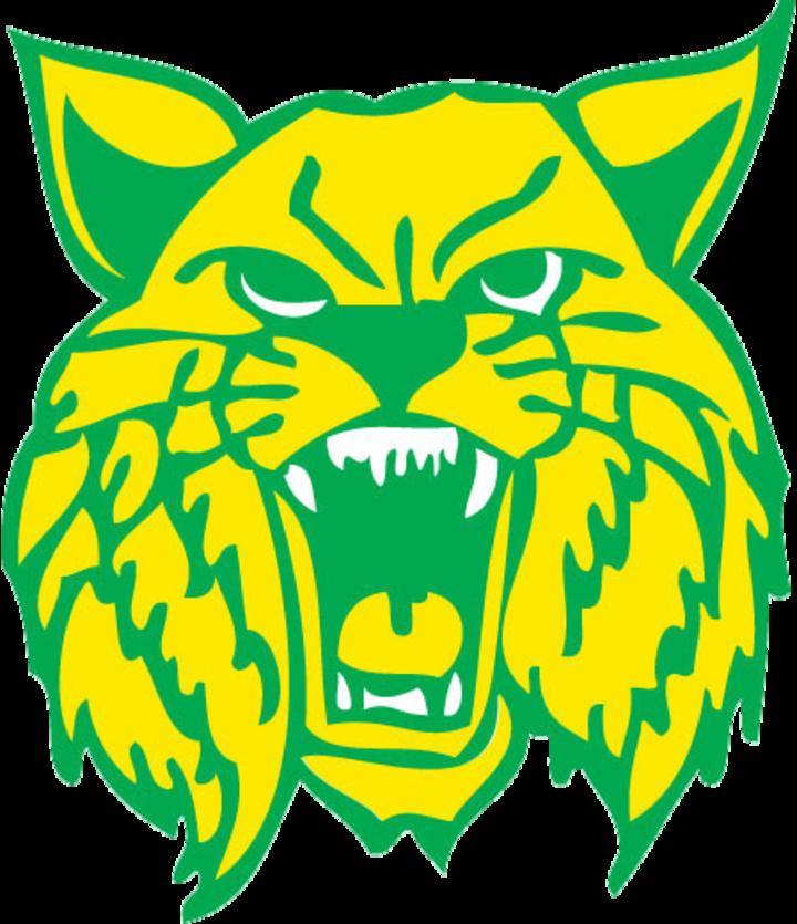 Hamilton High School mascot