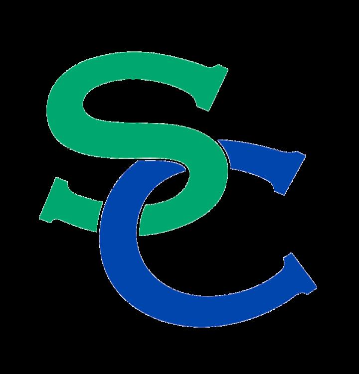 South County High School mascot