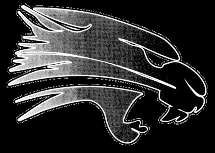 Palmyra-Eagle High School mascot