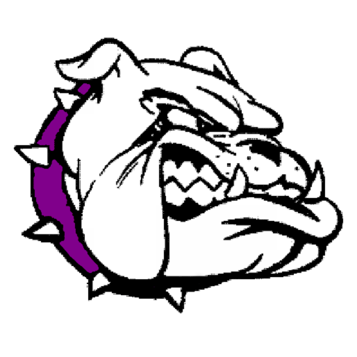 Lake Mills High School mascot