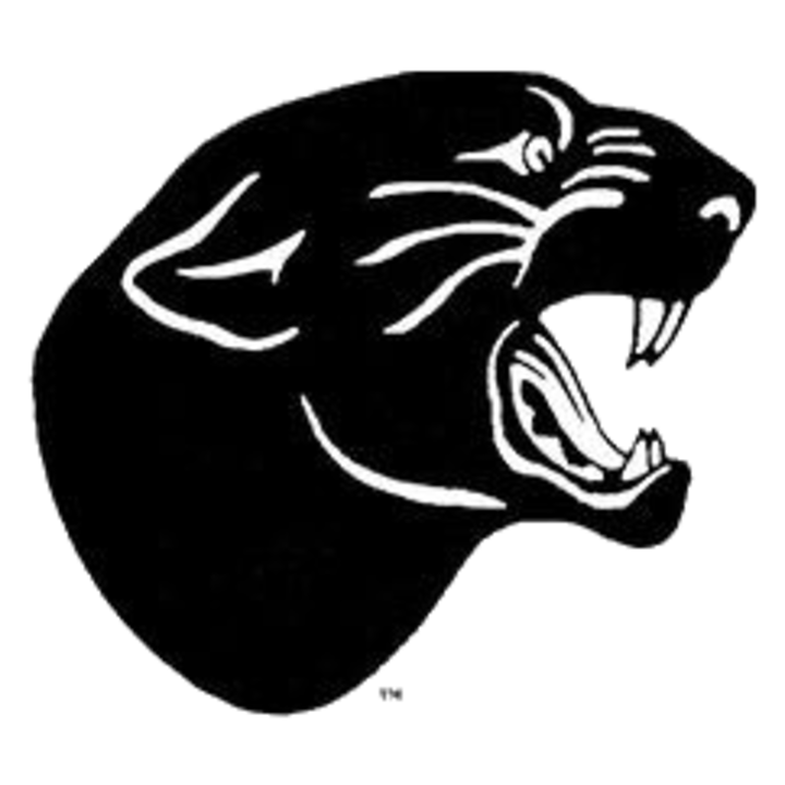 Stevens Point High School mascot