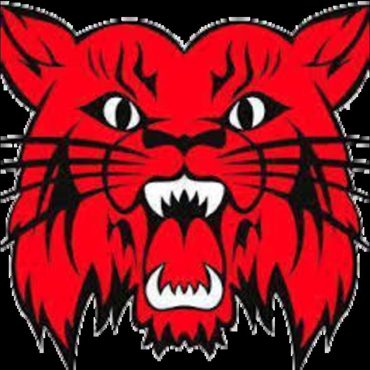 Central City High School mascot