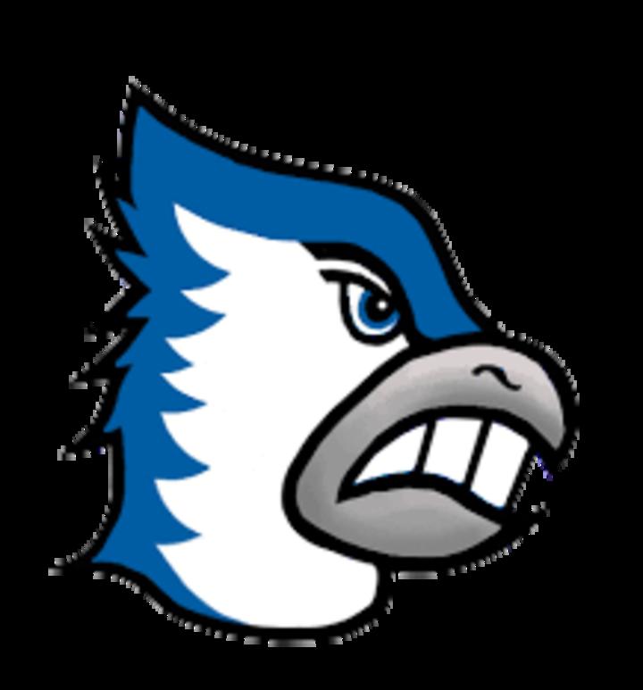 Bondurant-Farrar High School mascot