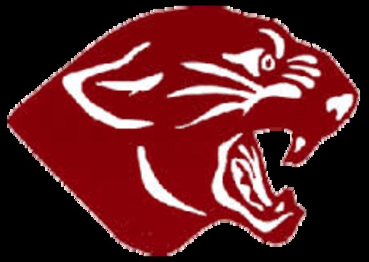 Mount Pleasant High School mascot