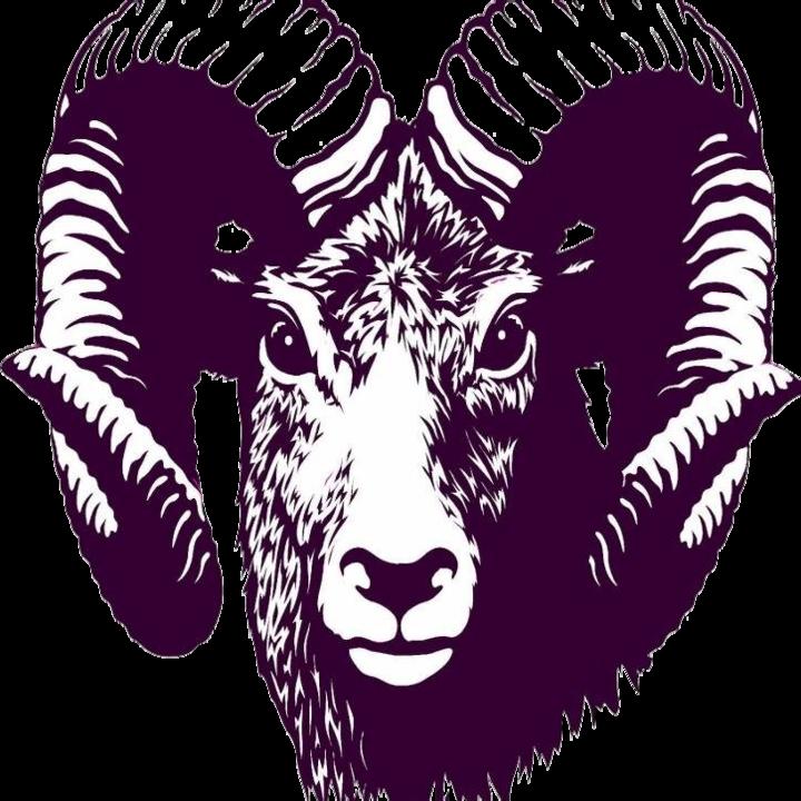 Strasburg High School mascot