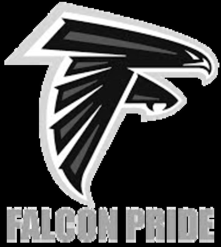 Wayne Community High School mascot