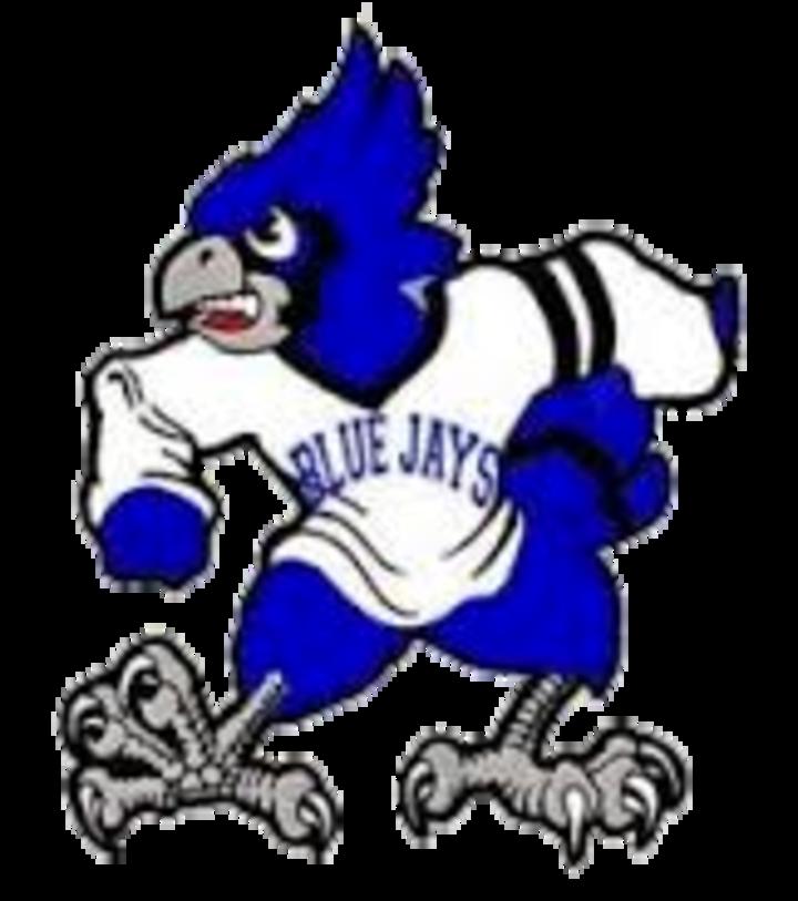 Perry High School mascot